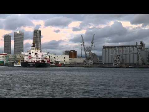 PACIFIC TRUST (Bulk carrier) ばら積み船、大阪港出港 2012-1-11 Osaka,Japan