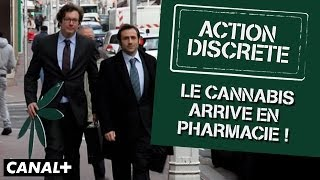 Action Discrète - Le cannabis arrive en pharmacie !