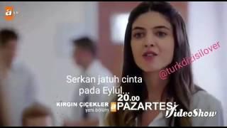 Video Bunga Yang Terluka 9 (Sinopsis Indonesia) download MP3, 3GP, MP4, WEBM, AVI, FLV Desember 2017