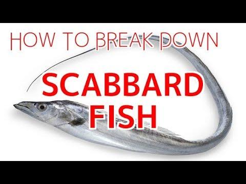 How To Break Down Scabbard Fish (Tachiuo)【Sushi Chef Eye View】