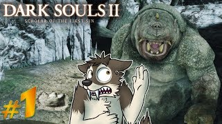 DARK SOULS 2 Let's Play Part 1 (Blind) || HOW BAD CAN IT POSSIBLY BE? || DARK SOULS 2 SOTFS