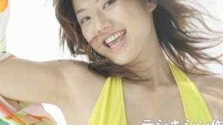 シノヤマネット(http://shinoyama.net)で公開中の、 デジキシン「相澤...