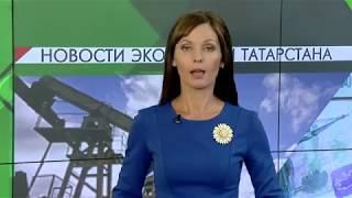 видео Краснодарский край, недвижимость, кредиты, рынок недвижимости, анализ, аналитика