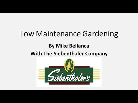 City Beautiful Commission: Low Maintenance Gardening