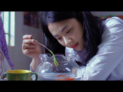 OST THÁNG 5 ĐỂ DÀNH - Con đường đã qua | Oplus Band | Thông tin phim điện ảnh 1