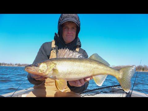 Fox River Walleye Fishing 2020 (Tips To Catch 'Em)