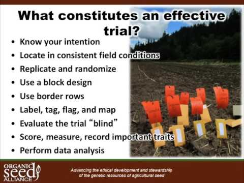 Organic Seed Production Six Webinar Series Part 2: Trials and Selection