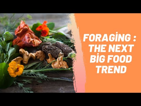Foraging: The Next Big Food Trend