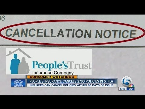 People's Trust Insurance cancels 2,700 policies