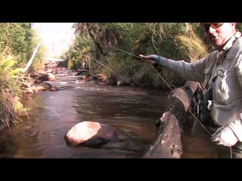 Fy Fishing Victoria's Small Streams...