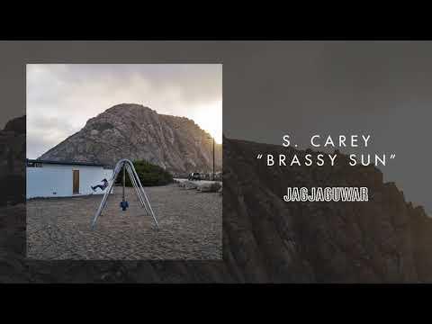 S. Carey  Brassy Sun