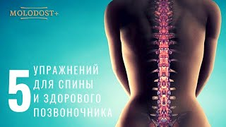 Болит спина? 5 упражнений Поля Брегга, которые тебе помогут / Spinal treatment