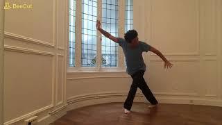 Zhan Zhuang - Jan Wu - La danse de l'énergie interne