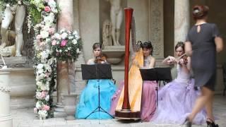 Струнное трио в р.Турандот - свадебная регистрация