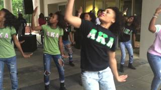 the nu rho chapter of alpha kappa alpha sorority inc spring 2015 uncg