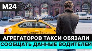 """Смотреть видео """"Прямо и сейчас"""": агрегаторов такси обязали сообщать данные водителей - Москва 24 онлайн"""