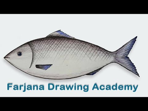 How To Draw  A Fish Step By Step (very Easy)