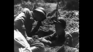 Солдаты отчизны: немецкая и советская кинохроника 1941-1942 . 1