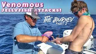 Portuguese Man o' War ATTACKS While Fishing for Reef Donkeys!