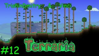 Terraria 1.2 - 12 - Теневая броня (T280)