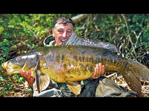 S12 Ep 1 Monster Mirror Carp in the Blackstone River Valley