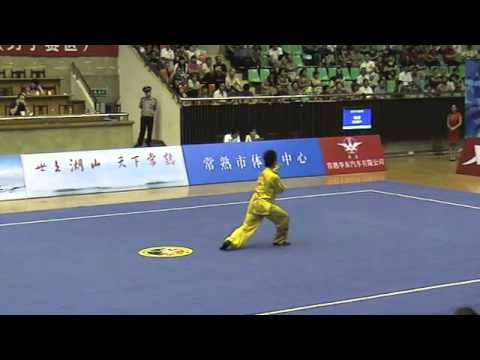 Zhang Zhen Xing (Henan) - Taiji Quan [2012 China Mens Wushu Nationals]