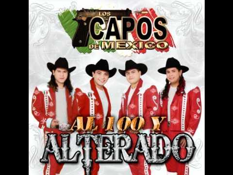 Los Capos De Mexico- La Canelera