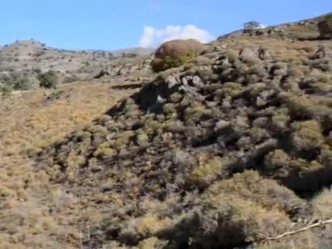 Eresos Lesvos   Land for sale