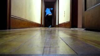 Video sock sliding down my hallway download MP3, 3GP, MP4, WEBM, AVI, FLV November 2017