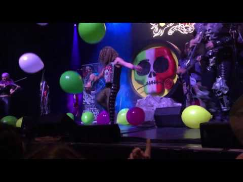Metalachi Master of Puppets