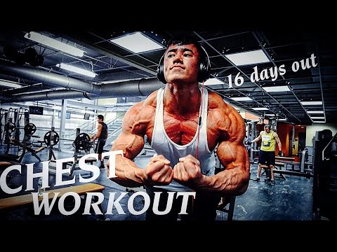 16 DAYS OUT | SHREDDED Chest Workout | Q&A Segment & Coaching Advice