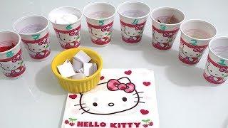 Video Hello Kitty' lerle Bardaktan Ne Çıkarsa Slime CHALLENGE - Hangsi Güzel Oldu? Bidünya Oyuncak download MP3, 3GP, MP4, WEBM, AVI, FLV Desember 2017