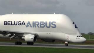 Airbus Beluga Landung in Hamburg Finkenwerder