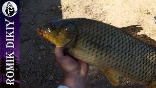 Рыбалка на реке Или. Летнее пекло. (6-8 июля 2017г.)