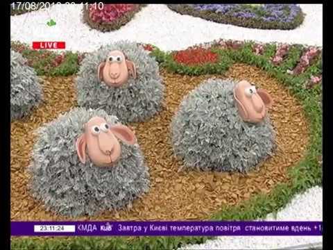 Телеканал Київ: 17.08.18 Столичні телевізійні новини 23.00