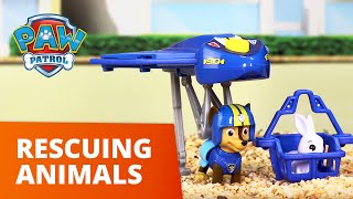 PAW Patrol   Animal Rescues! Pups Save the Day!   Toy Episode Compilation