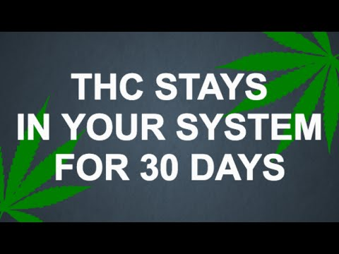 Thc Stays In Your System For Days