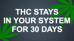 THC Stays in Your System for 30 Days!