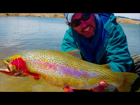 Fly fishing for south park pigs pt 2 of 2 youtube for Antero reservoir fishing report