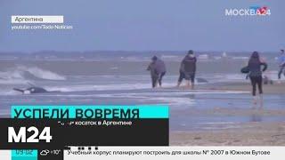 Другие новости России и мира за 17 сентября - Москва 24