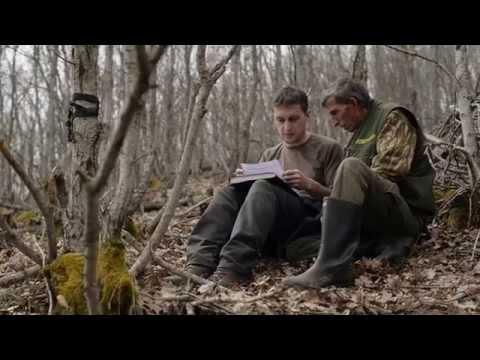 Balkan Lynx Recovery Programme