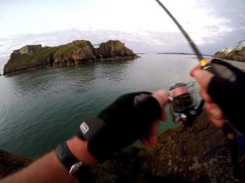LRF FISHING TENBY MORNING EBBS