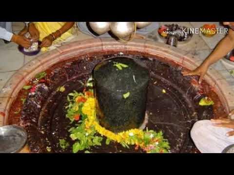 சிவதரிசனம் மெய்சிலிர்க்கும்  பாடலுடன் ஓம் நமசிவய