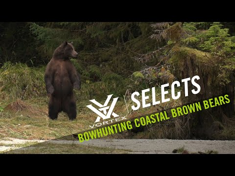 Coastal Brown Bear with a Bow   Vortex Selects