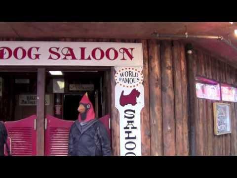 Cruise Cardinal: Ketchikan/Juneau Alaska Shore Excursion, 6-2013 Cruise Reviews