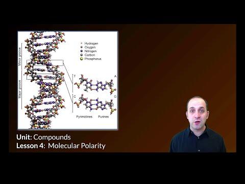 K-Chem 7.4: Polarity