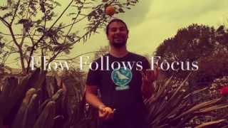Flow Follows Focus