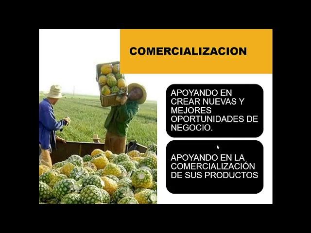 Módulo 1.5: Principios y criterios de la RSPO Inclusión de pequeños productores