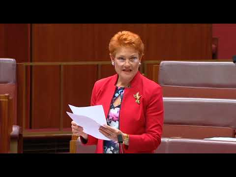 LABOR PARTY EXPOSED | Pauline Hanson calls out Labor on immigration Mp3