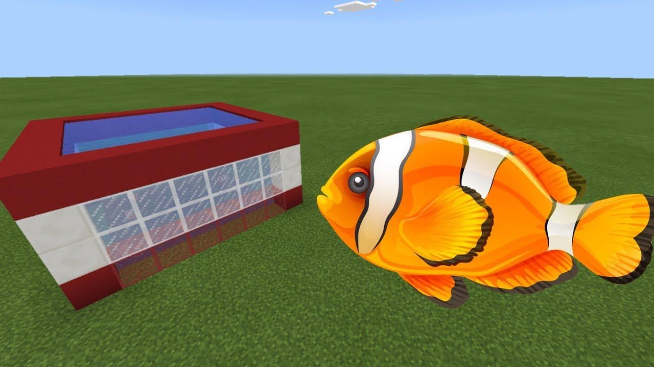 How to make a nemo fish farm in minecraft pe youtube for How to fish in minecraft pe